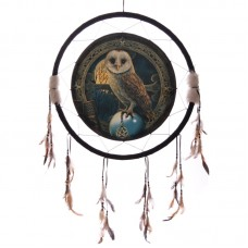 Decorative Magical Barn Owl 60cm Dreamcatcher
