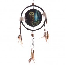 Decorative Fantasy Owl Dreamcatcher Small