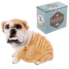 Fun Bulldog Design Ceramic Money Box