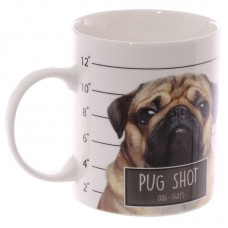Collectable New Bone China Mug - Cute Pug Shot Design