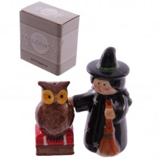 Ceramic Magical Witch and Owl Salt and Pepper Set